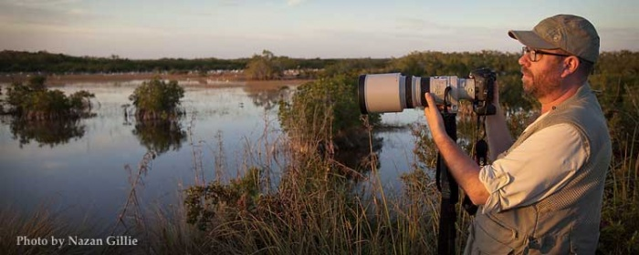 Cameron Gillie taking a wildlife photograph in the Florida Everglades.