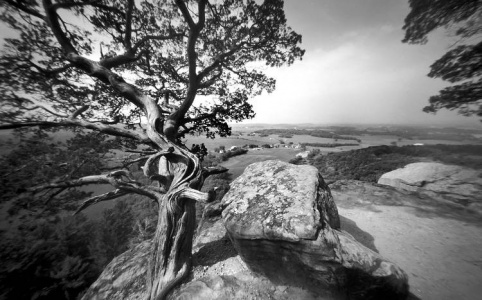 Pinhole photography from the Gibraltar Rock trail near Lodi, Wisconsin.