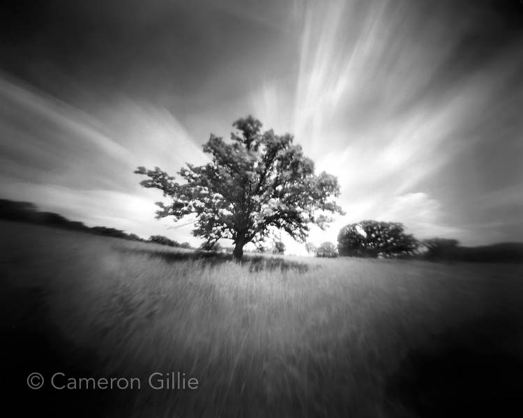 Pinhole Photography By Cameron Gillie The Pinhole Thing