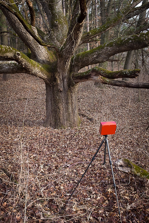 a pinhole camera taking a photograph of a tree